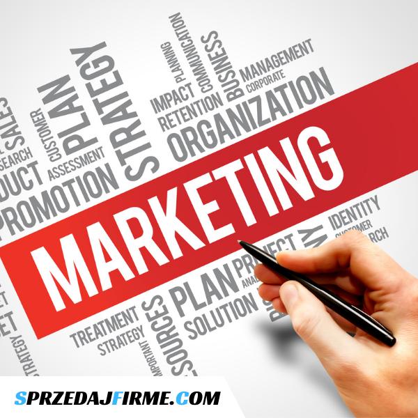 Spółka z obszaru e-marketingu na sprzedaż
